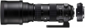 Sigma 150-600mm f/5.0-6.3 DG OS HSM Sports + Converter TC-1401 (Canon)